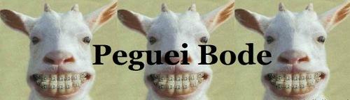 Logo Blog Peguei Bode
