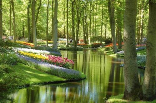 Keukenhof Gardens - Holanda